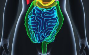 rectumkanker.jpg