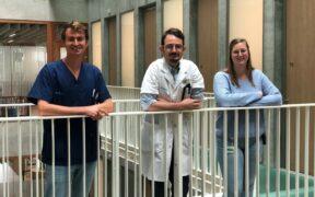 Hoofdonderzoekers dr. Lucas Wauters, prof. dr. Tim Vanuytsel en studiecoördinator Karlien Geboers © UZ Leuven
